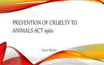 THE NEED TO REVISIT THE PREVENTION OF CRUELTY TO ANIMALS ACT,1960 – BY B.S.S. SRIDEVI (DSNLU)